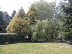 pickhams garden 1