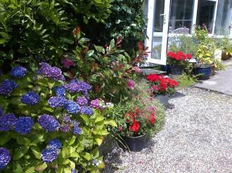 pickhams garden 4