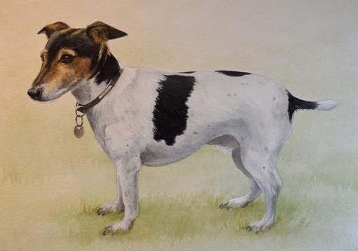 Lennie 1 - watercolour commission - SOLD