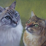 Pablo and Lilly - pastel on paper (Commission from owner's photos- SOLD)